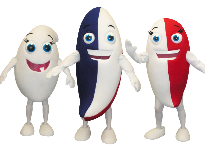 Gogo Fish – Custom Mascot Costume Makers